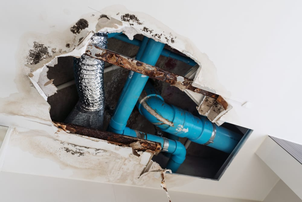 5 Causes of Household Water Damage & How to Fix Water Leaks